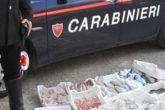 pesce-carabinieri-508x250.jpeg